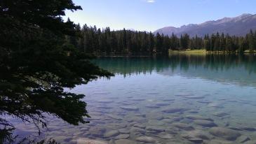 Photo Credit: Jane H. Johann, Jasper, Alberta, Canada, 2013.