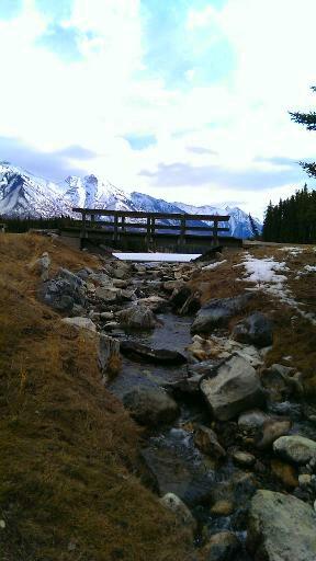 Copyright ©Jane H. Johann, 2014 Banff region, Alberta, Canada