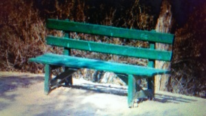 """""""Lonely Bench"""" Image ID: 913573 http://www.freeimages.com/photo/913573"""