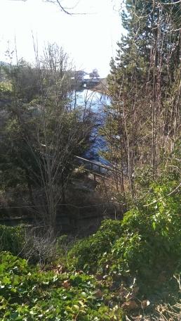 Copyright ©Jane H. Johann, 2016 Whatcom Creek Walkway along Whatcom Creek flowing into Bellingham Bay
