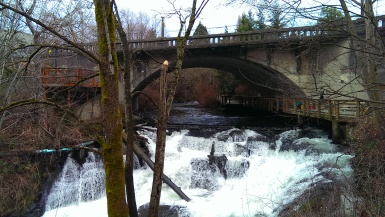 """Copyright ©Jane H. Johann, 2016 """"Whatcom Creek"""" with Pickett Bridge build in 1865 offering a path above the water."""