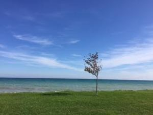 "Copyright ©Jane H. Johann, Lake Michigan, Kenosha, WI. September 2016; ""Presence."""